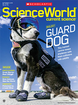 scholastic science world the current science magazine - 411×550