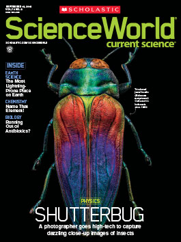 scholastic science world the current science magazine - 265×354