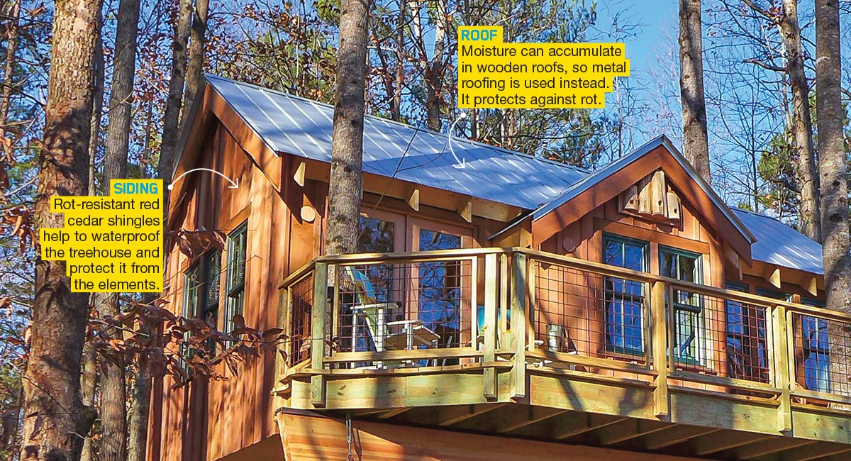Tricked-Out Treehouses Engineering Article for Students | Scholastic on tree arm designs, flowers designs, tree of life designs, candle designs, tree twig designs, tree root designs, tree trunk designs, scarecrow designs, tree leaf designs, snowman designs, tree palm designs, tree leg designs, tree back designs, beach designs, tree hand designs, tree wood designs, pencil designs, snow designs, tree family designs,