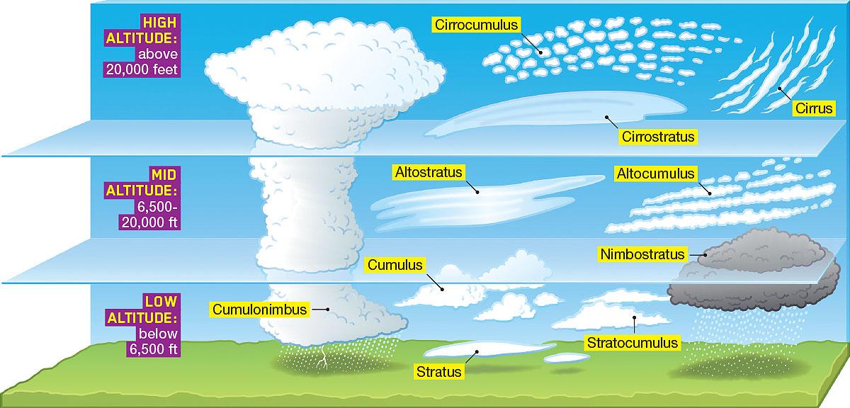 Weather Freebie -Name that Cloud or Precipitation-2 pg worksheet ...