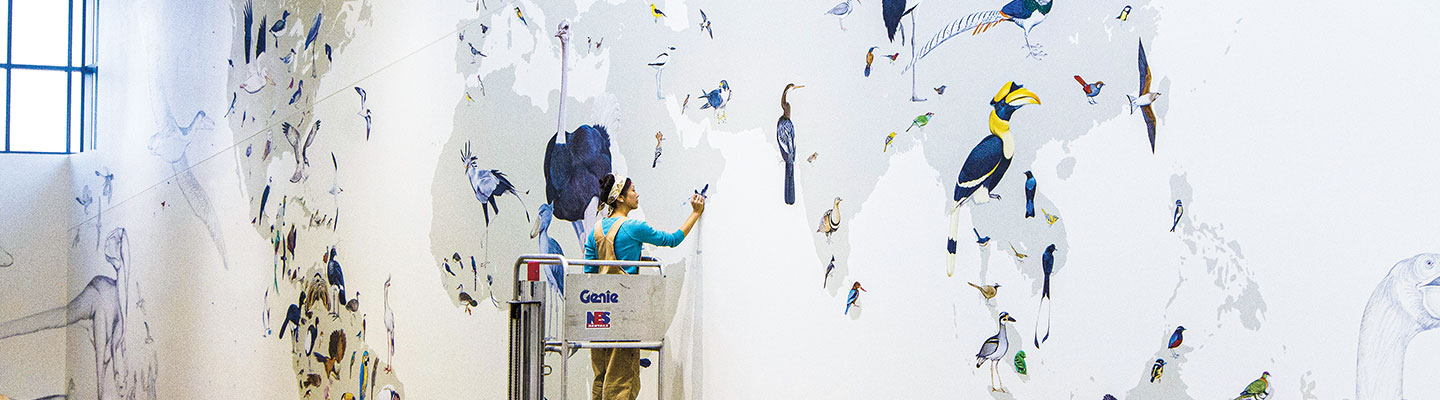 A woman painting birds on a mural